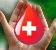 В 2012 году в области сдали кровь более 27 тысяч человек