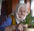 В Вольске прошла акция «бабушкина герань»