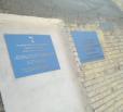 В Вольске в здании городской поликлиники растут грибы