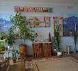 Живой уголок – островок природы в школе №3.